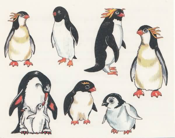 Penguins Tattoos
