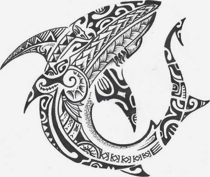 Polynesian Shark Tattoo Design