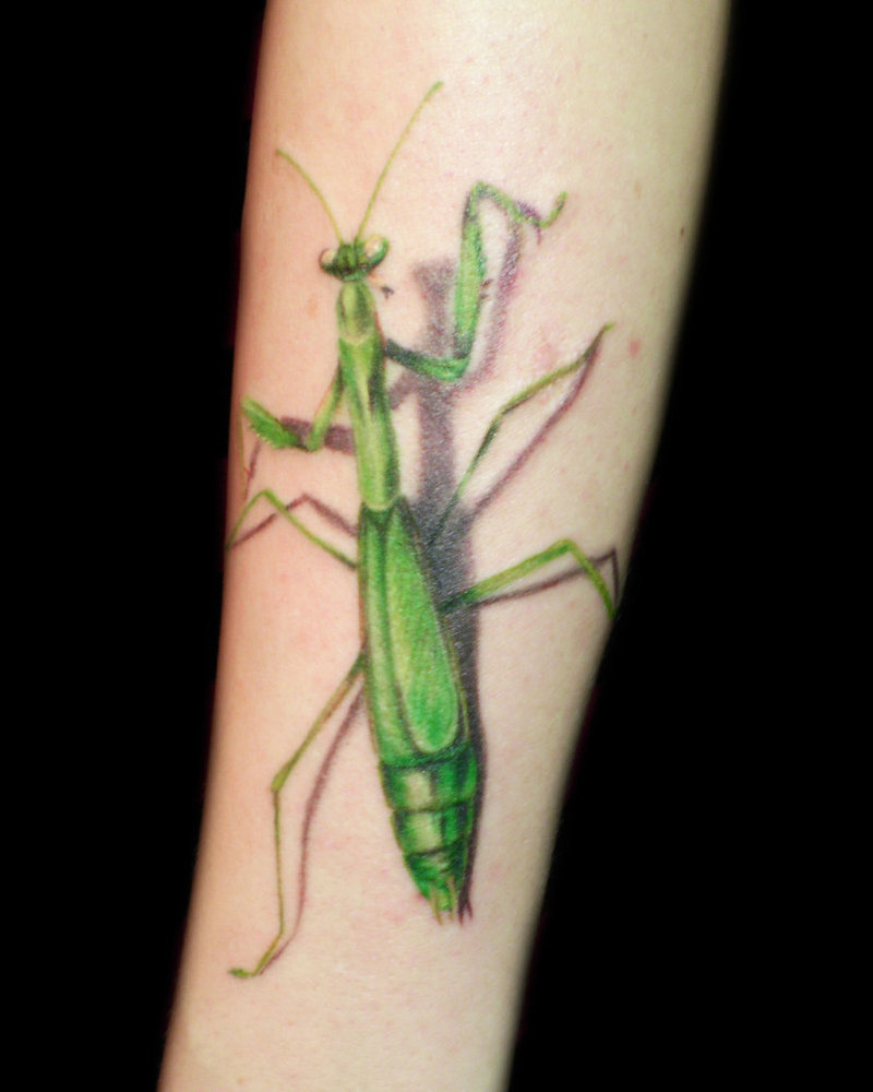 Praying Mantis 3D Tattoo