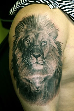 Amazing Animal Tattoos On Biceps