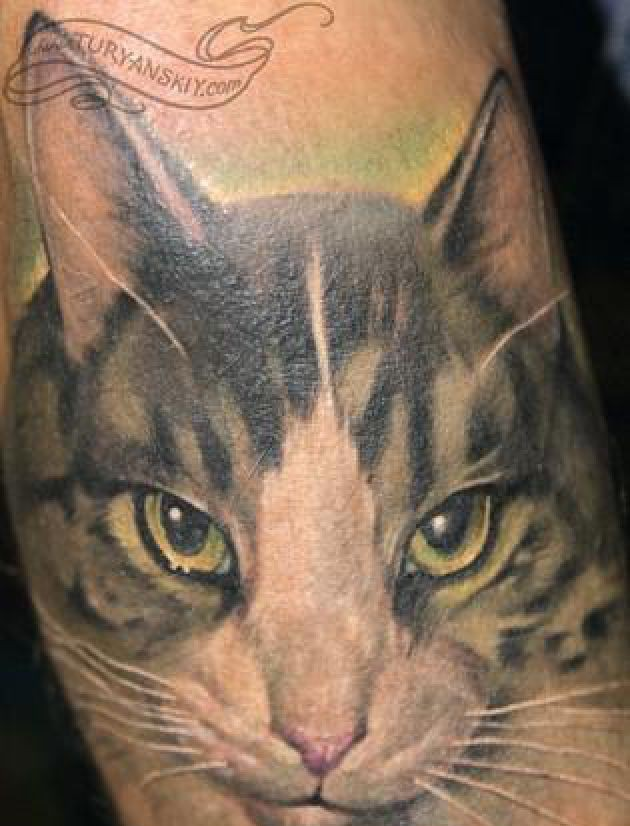 Amazing Cat Face Portrait Tattoo