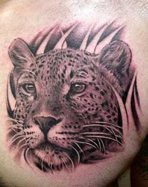 Amazing Grey Ink Leopard Portrait Tattoo On Chest