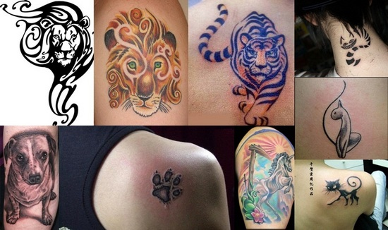 Animal Tattoos Pictures For Girls