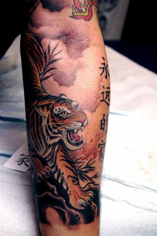 Asian Symbols And Animal Tattoos On Arm