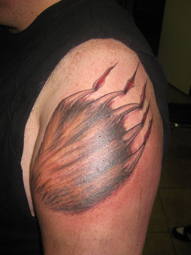 Awesome Bear Claw Scratch Tattoo On Biceps