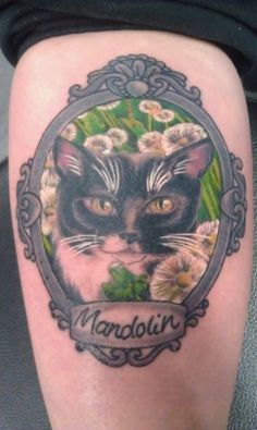 Beautiful Cat Portrait In Frame Tattoo