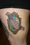 Beautiful Pigeon And Mirror Tattoo On Ribs