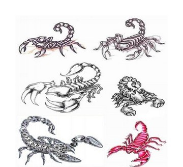 Best Six Scorpion Tattoo Designs