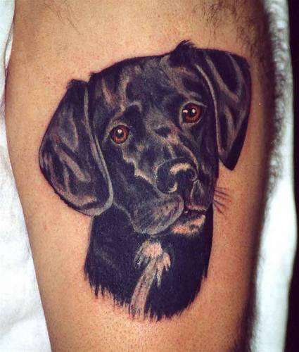 Black Ink Dog Head Tattoo On Muscles