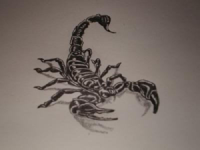 Black Ink Scorpion Tattoo Design