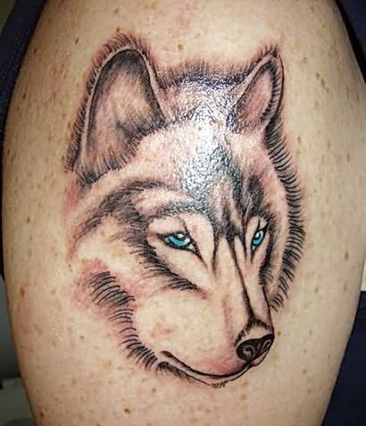Blue Eyed Animal Face Tattoo