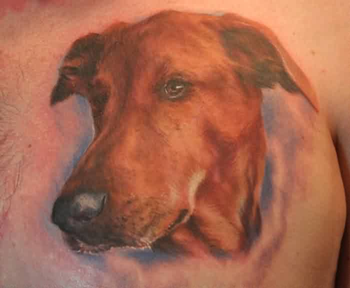 Brown Ink Dog Face Portrait Tattoo On Chest