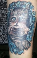 Cat Portrait In Blue Frame Tattoo
