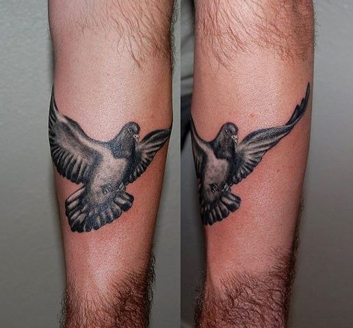 Clean Flying Pigeon Tattoos