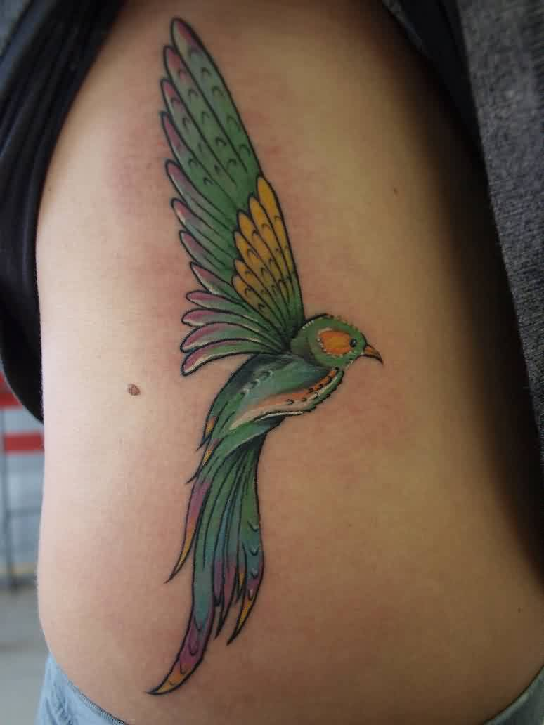 Color Ink Pigeon Tattoo On Ribs