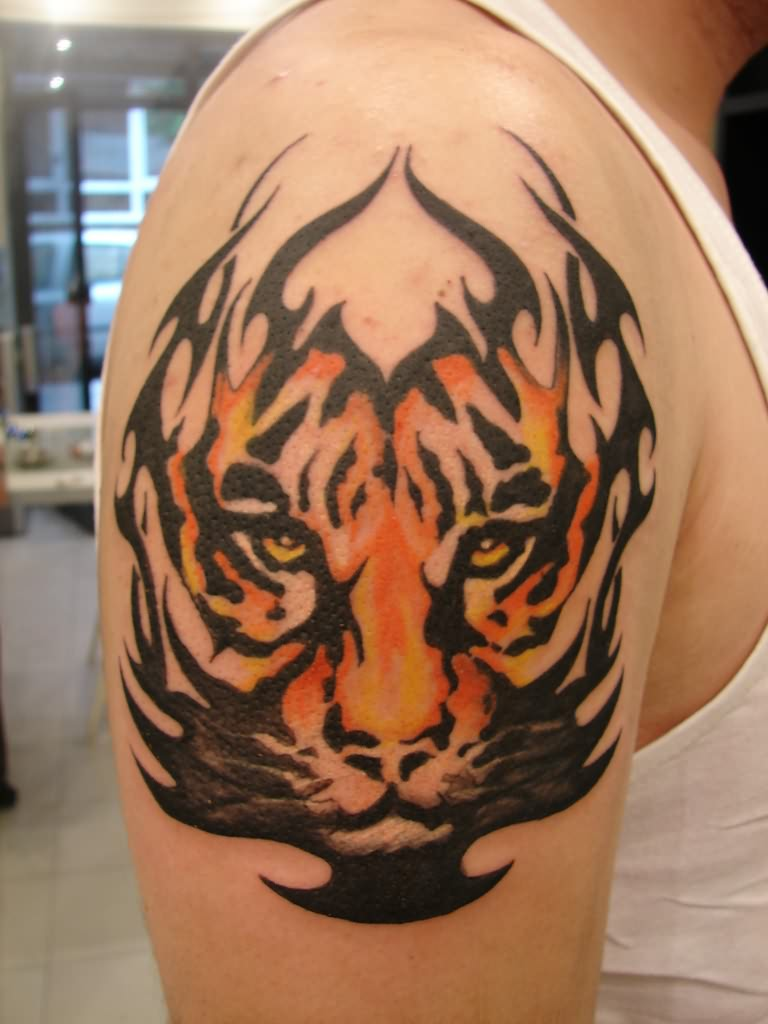 Cool Tribal Tiger Tattoo On Biceps
