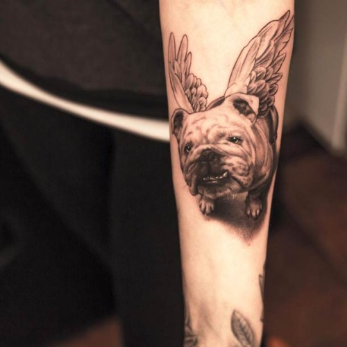 Cute Animal With Wings Tattoo