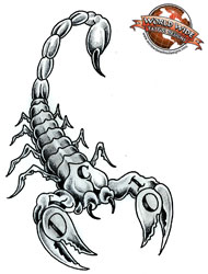 Design For Scorpion Tattoo