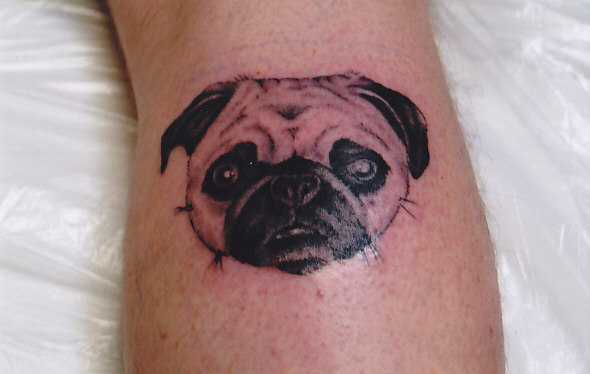 Dog Face Portrait - Animal Tattoo