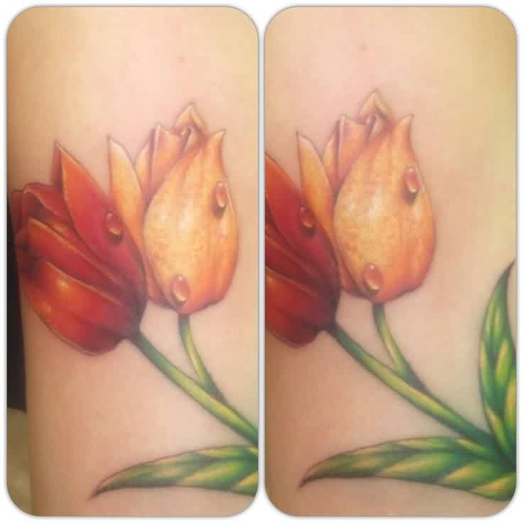 Drops On Tulip Tattoo