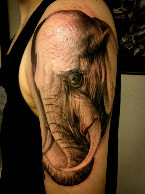 Elephant Head Tattoo On Half Sleeve