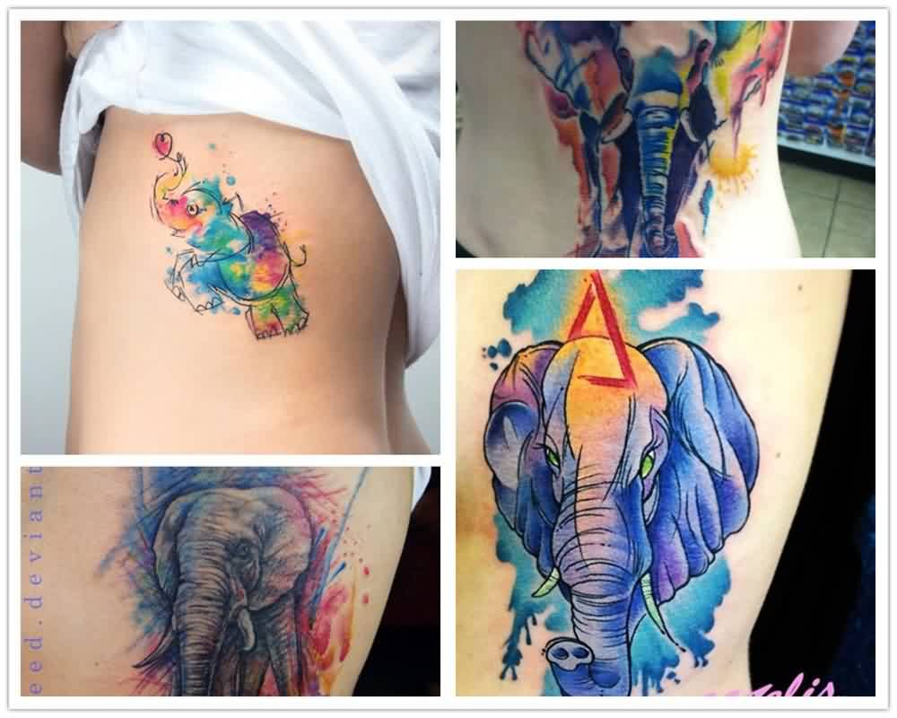 Elephant Watercolor Tattoo Pictures