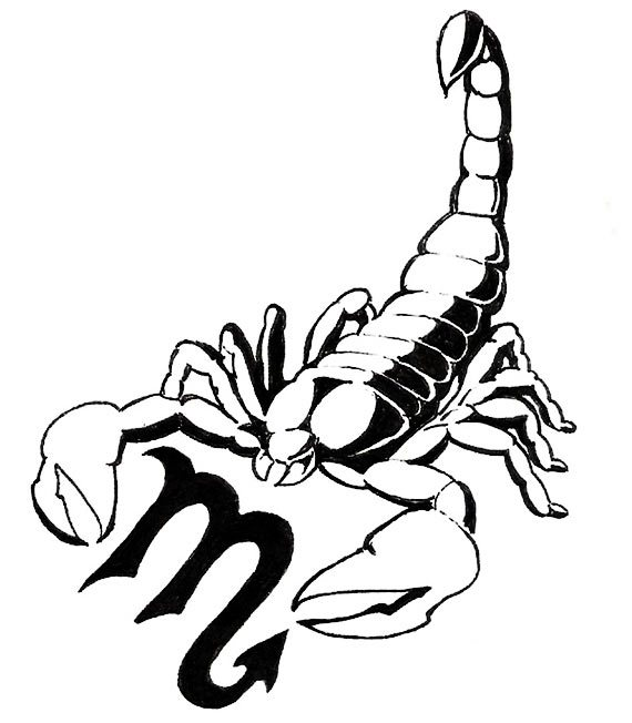 Free Zodiac Scorpio And Scorpion Tattoo Design