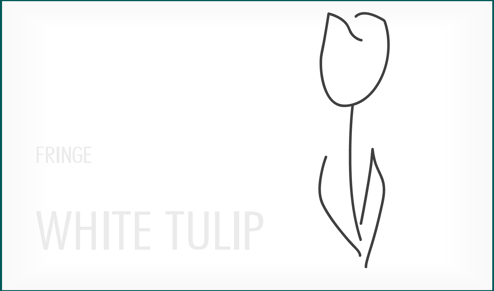 Fringe White Tulip Tattoo Wallpaper