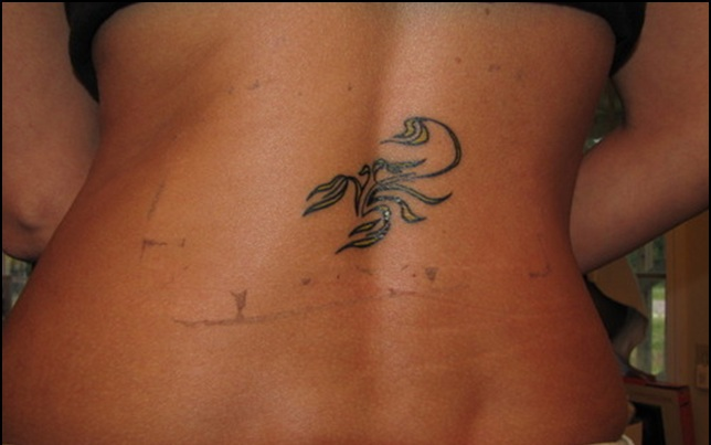 Gorgeous Scorpion Tattoo On Spine