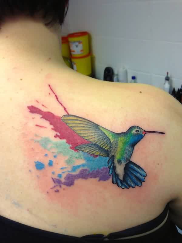 Gorgeous Watercolor Bird Tattoo On Right Back Shoulder