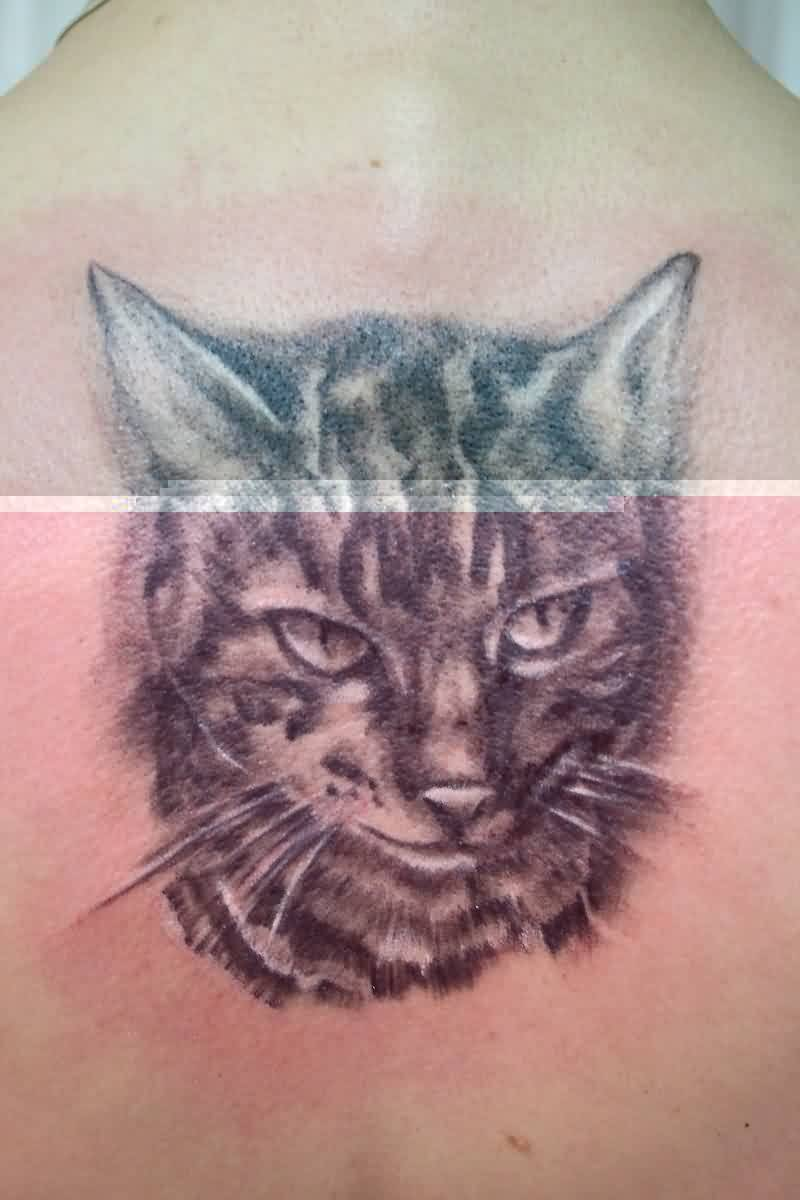 Grey Ink Cat Head Portrait Tattoo
