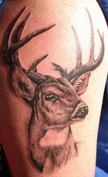 Grey Ink Deer Tattoo On Biceps