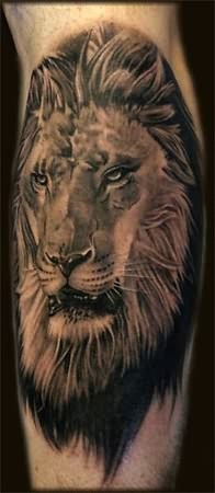 Grey Ink Lion Face Tattoo On Arm