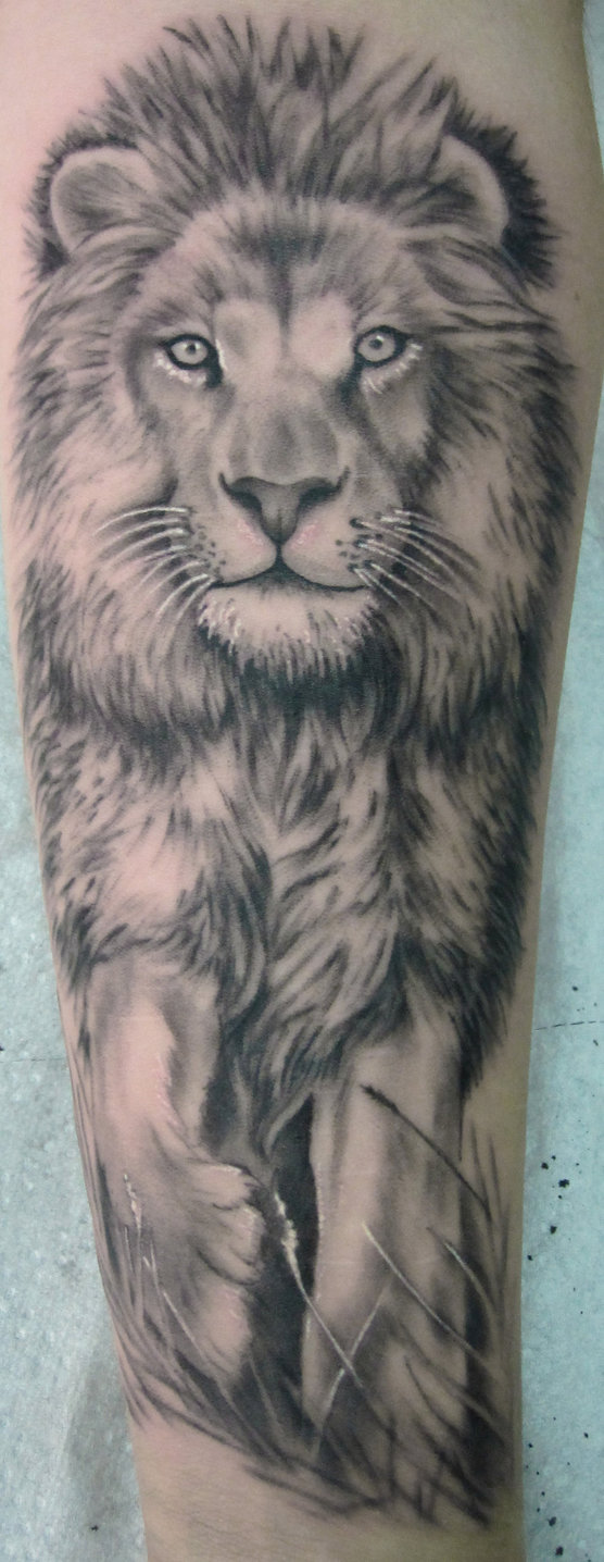 Grey Ink Lion Portrait Tattoo On Arm