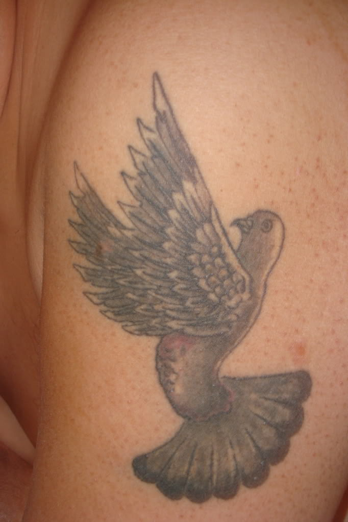 Grey Ink Pigeon Tattoo On Biceps