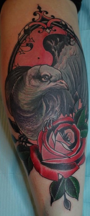 Grey Pigeon With Rose Tattoo On Arm