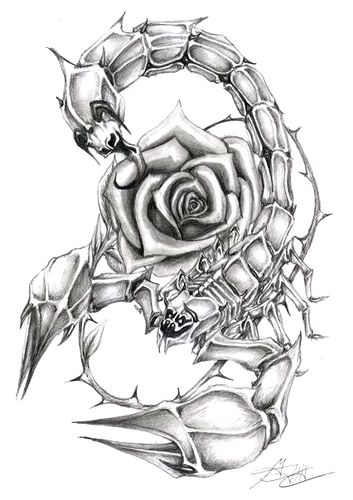 Grey Scorpion And Rose Tattoo Designs