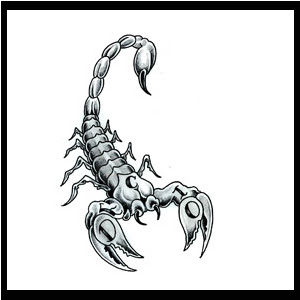 Grey Scorpion Tattoo Photo