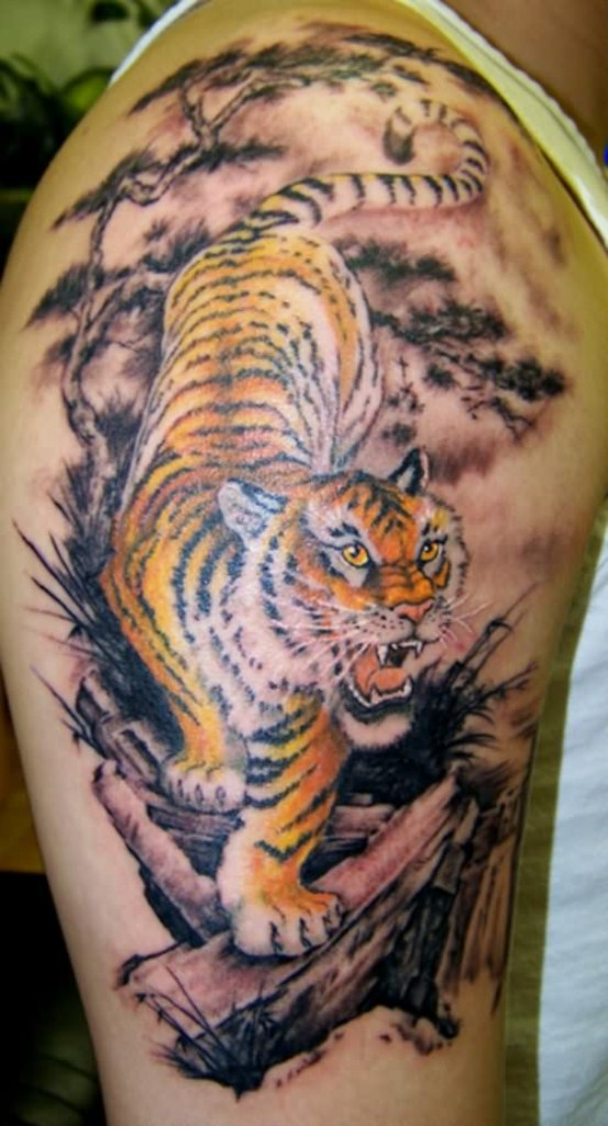Hungry Wild Tiger Tattoo On Biceps