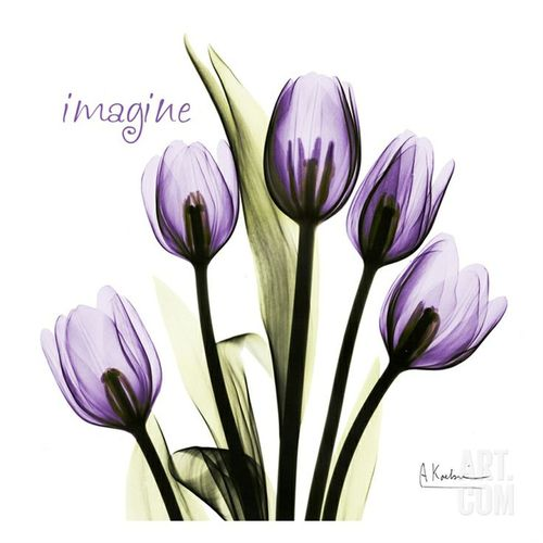 Imagine Tulips Tattoo Designs