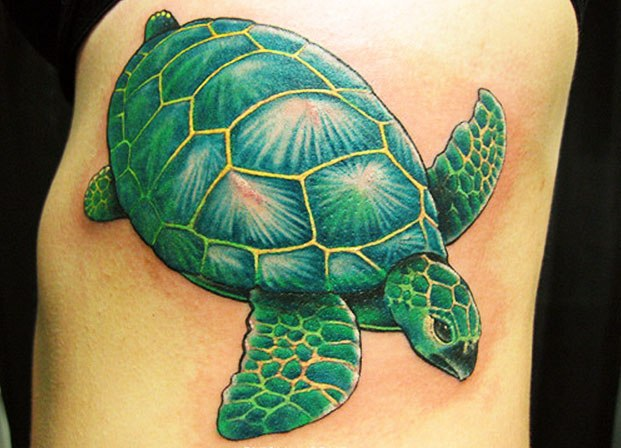 Impressive Green Turtle Tattoo