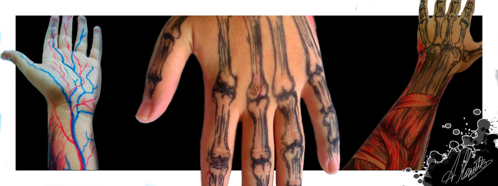 Muscle And Bone Tattoo Pictures