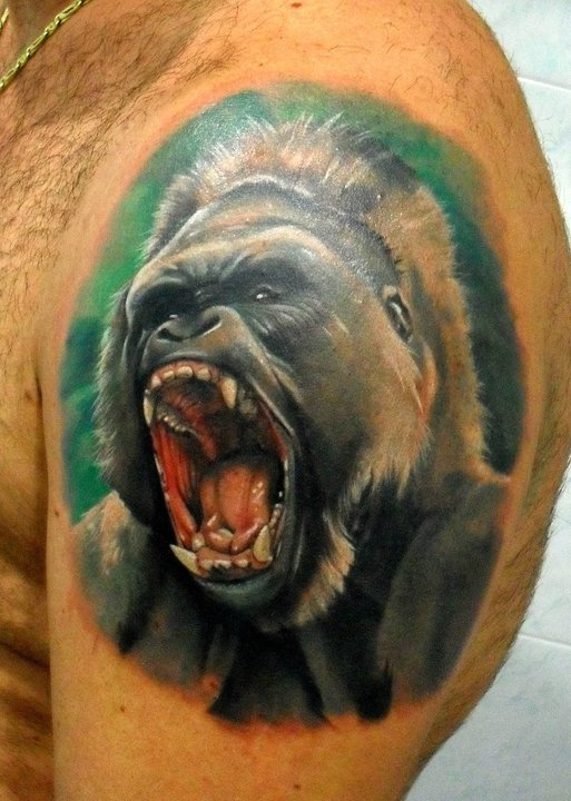 New Colored angry Gorilla Portrait Tattoo On Shoulder