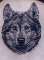 Nice Wolf Head Tattoo