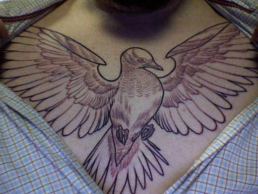 Open Wings Pigeon Chestpiece Tattoo