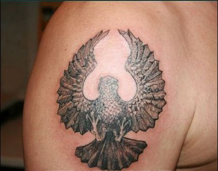 Open Wings Pigeon Tattoo On Biceps