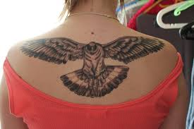Open Wings Pigeon Tattoo On Upperback