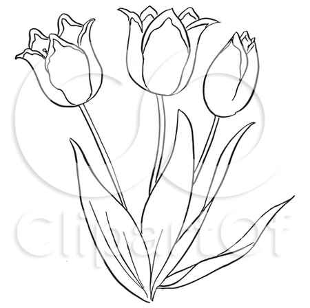 Outlined Tulip Flower Tattoo Sample
