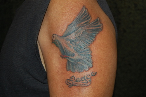 Peace - Pigeon Tattoo