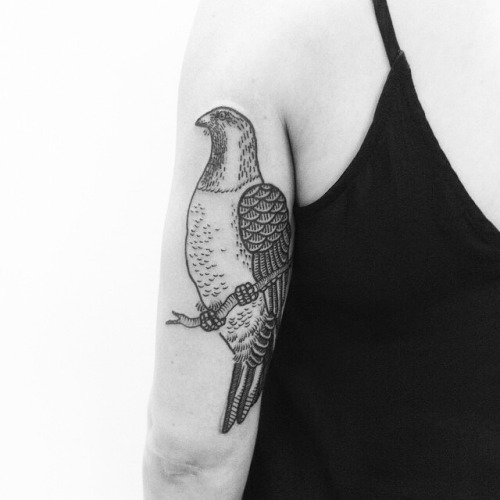 Pigeon Sitting On Branch Tattoo On Arm
